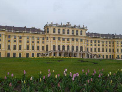 Czy da się zwiedzić Wiedeń w 6 godzin?